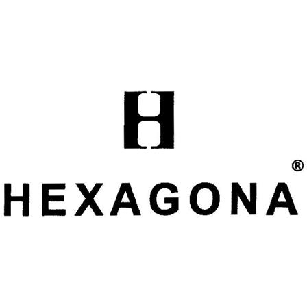 h hexagona 79124608